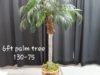 plam-tree