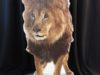lion-stand-up-125-220
